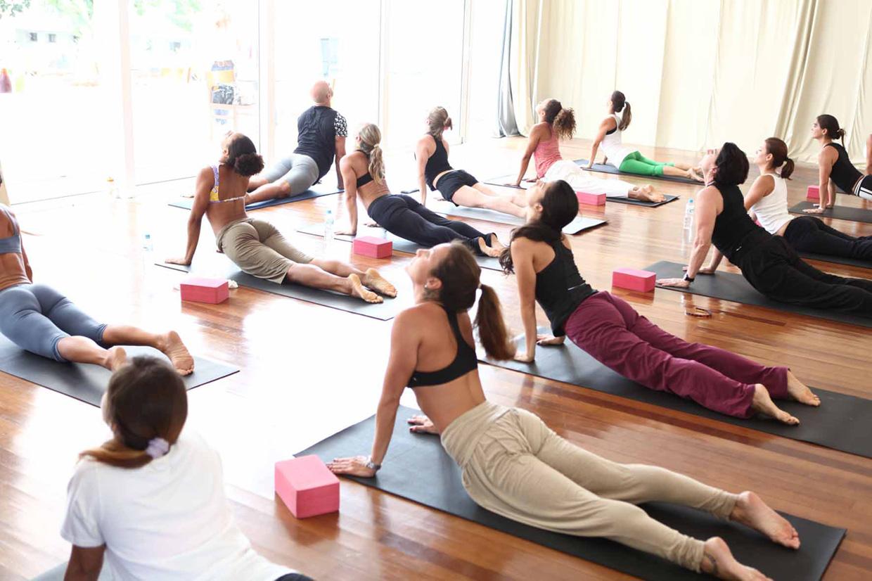 Йога описание. Yoga что это такое